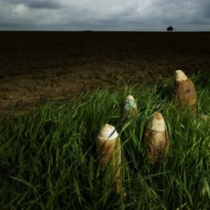 500_2014-00069-somme